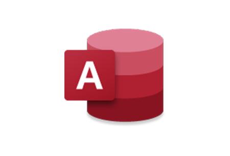 Microsoft Partner Access Logo