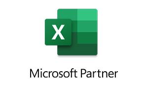 Microsoft Partner Excel Logo